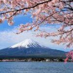 日本は益々【駄目になる国】だと確信した